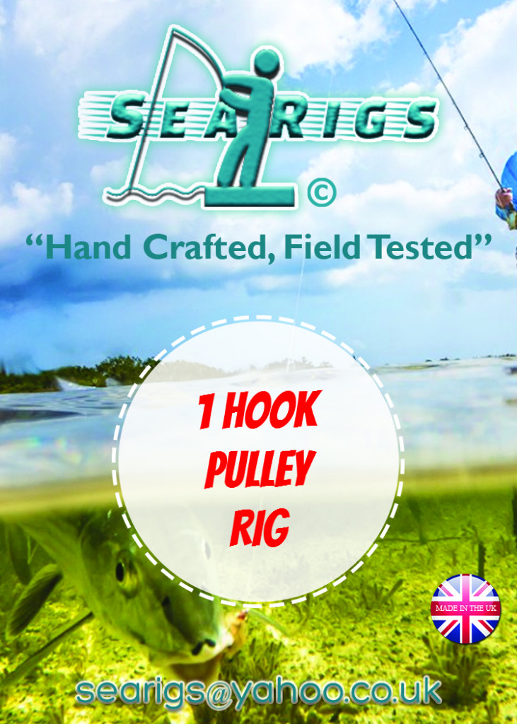 Single Hook Pulley Rig (Standard)