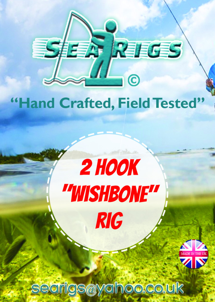 2 Hook  Wishbone Rig