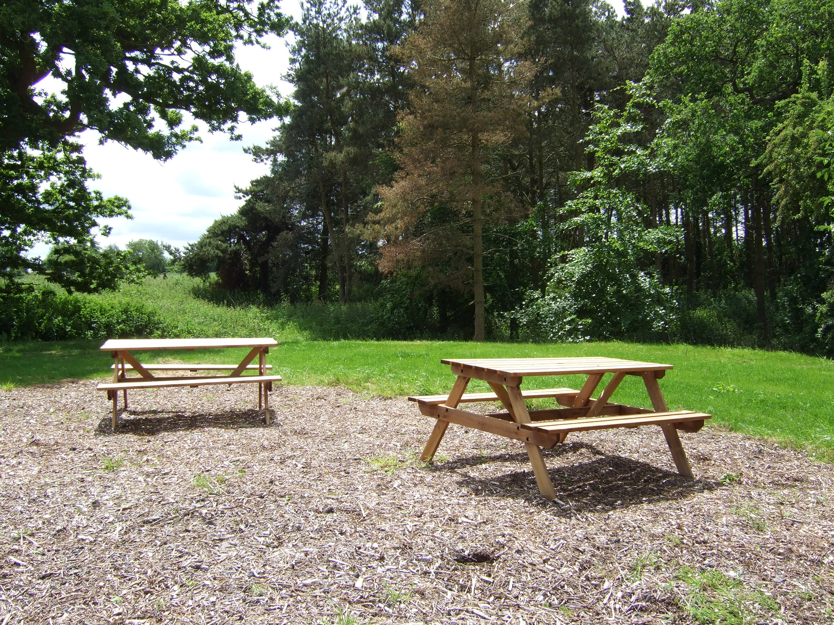 Woodland Eating Area