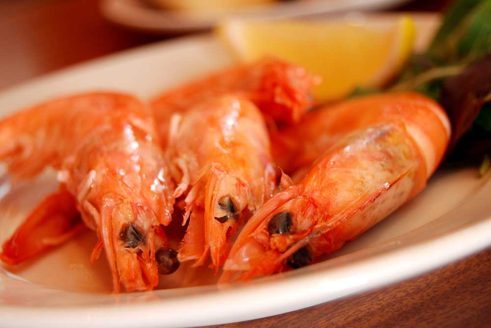 Prawns cooked in oil with garlic from Meson Don Felipe