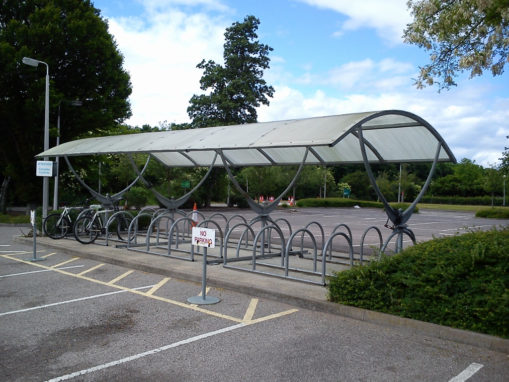 Low level bicycle canopy cleaning for Aveva - Cambridge