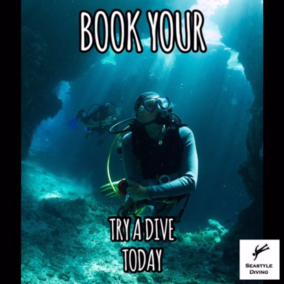 Refresh your scuba skills. Pool based experience