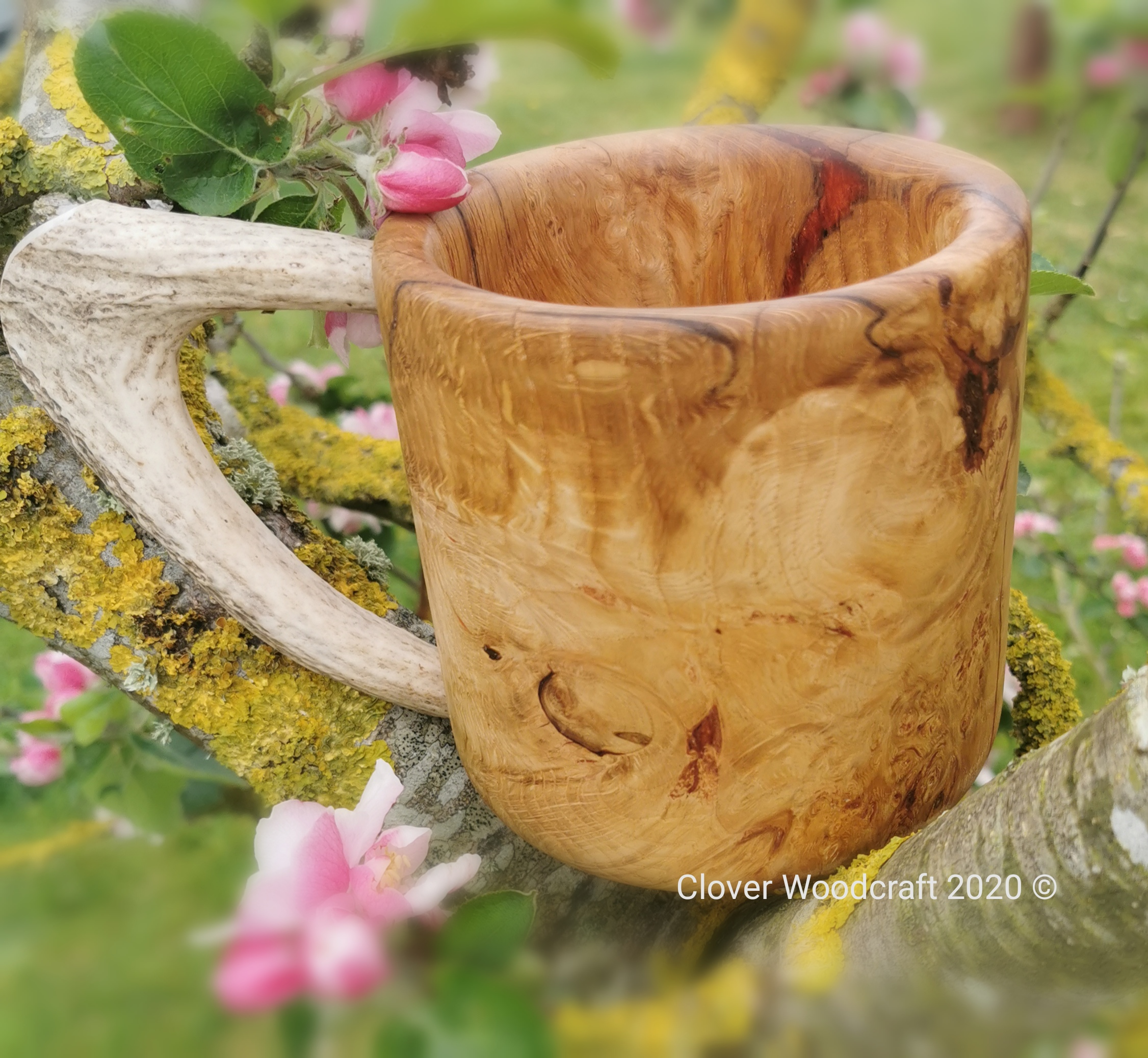 Irish Red Oak Large Burl Tankard with Deer Antler handle.