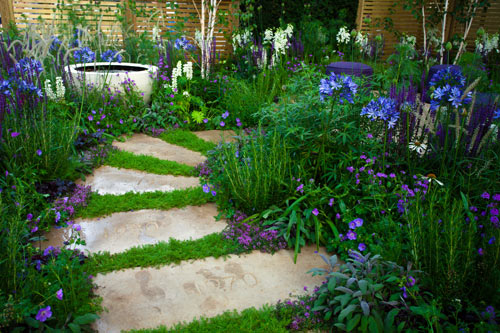 Stepping stone pathway into a bright and contemporary garden