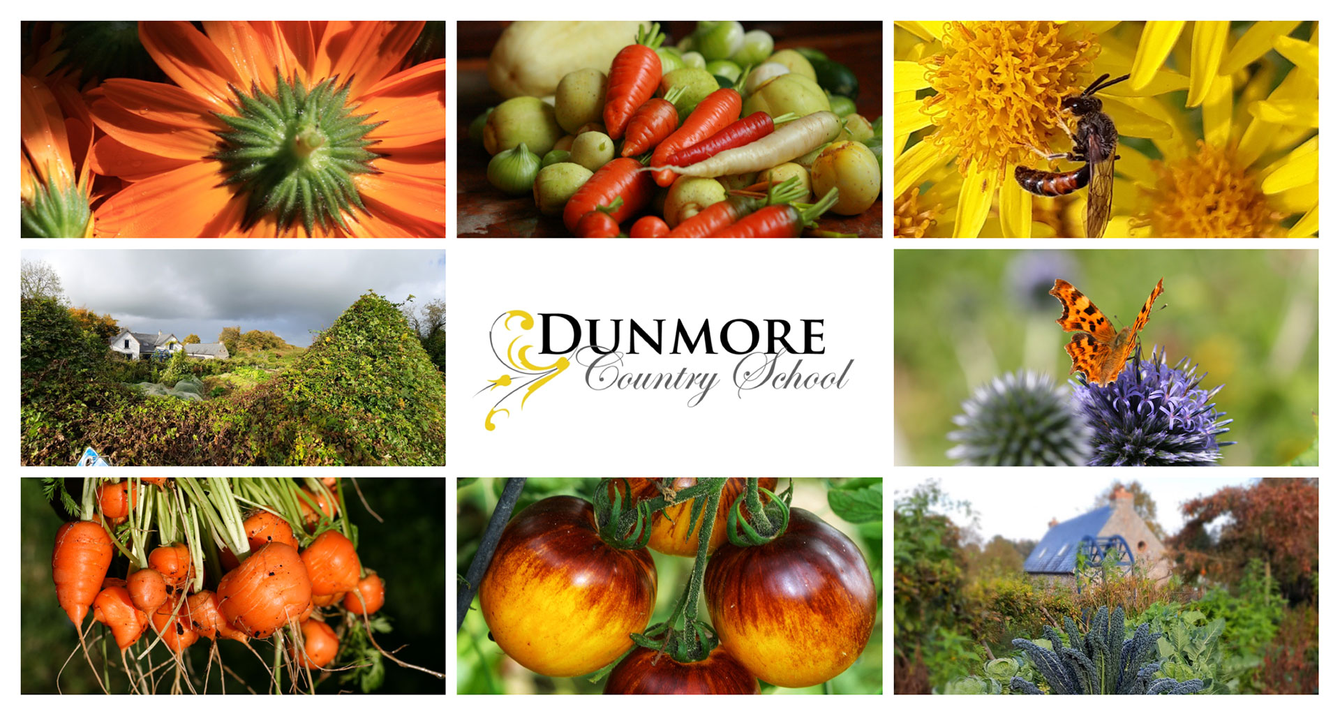 Upcoming Gardening Courses at Dunmore Country School