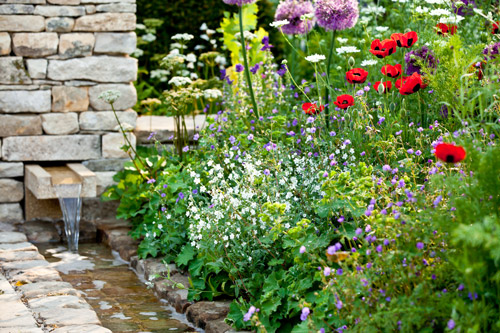 mixed summer flowers behind a water rill