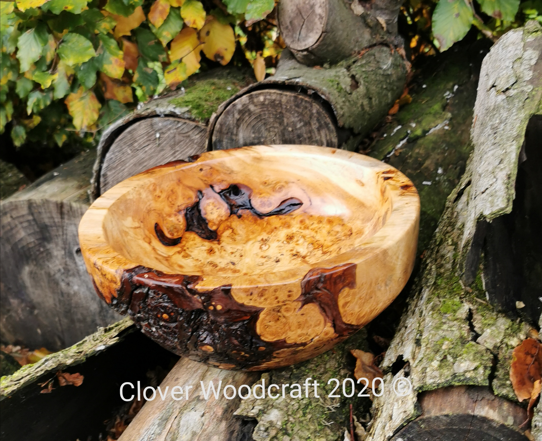 Wood Turned Burl Horse Chestnut Live Edge Bowl