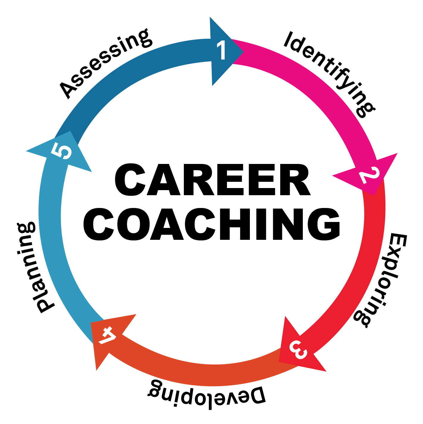 Career Guidance Greystones