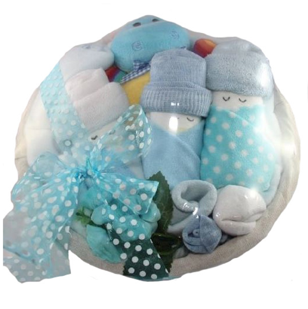 Cute Babies Gift Basket - Blue