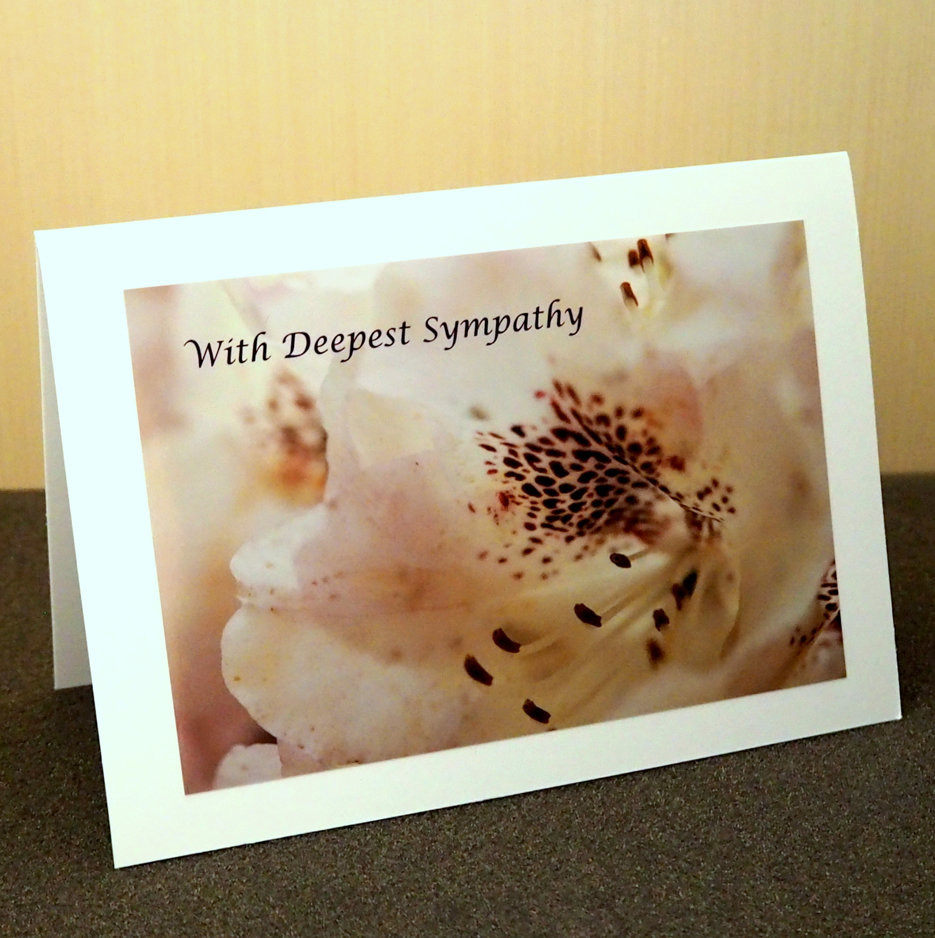 Expressions of Sympathy Card Collection