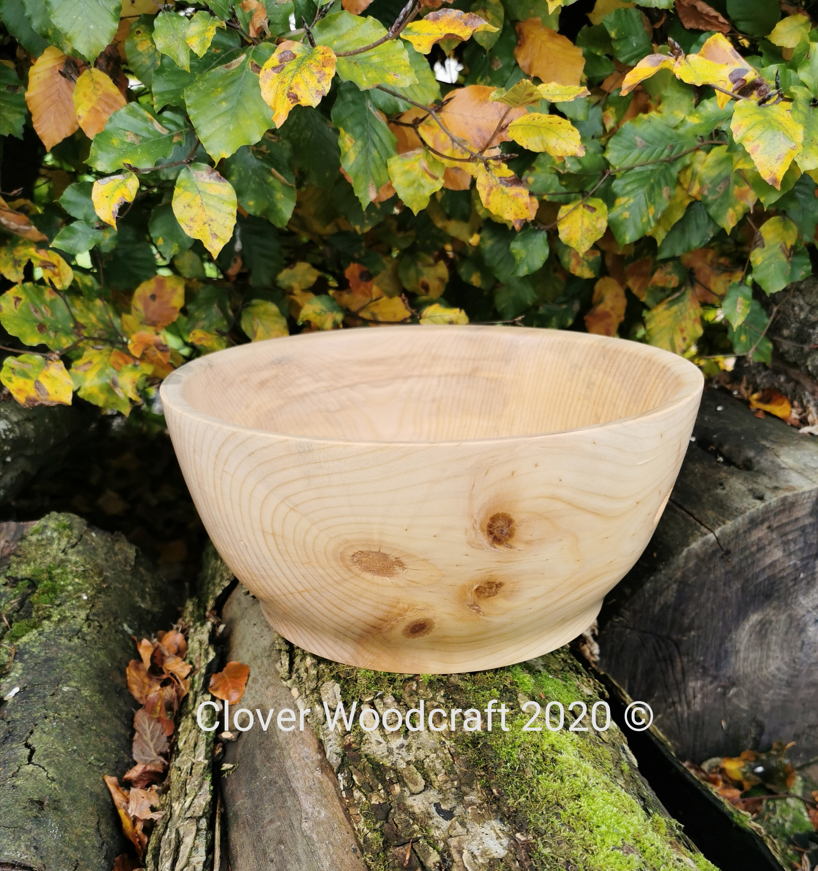 Monkey Puzzle Wood Turned Large Salad Bowl.