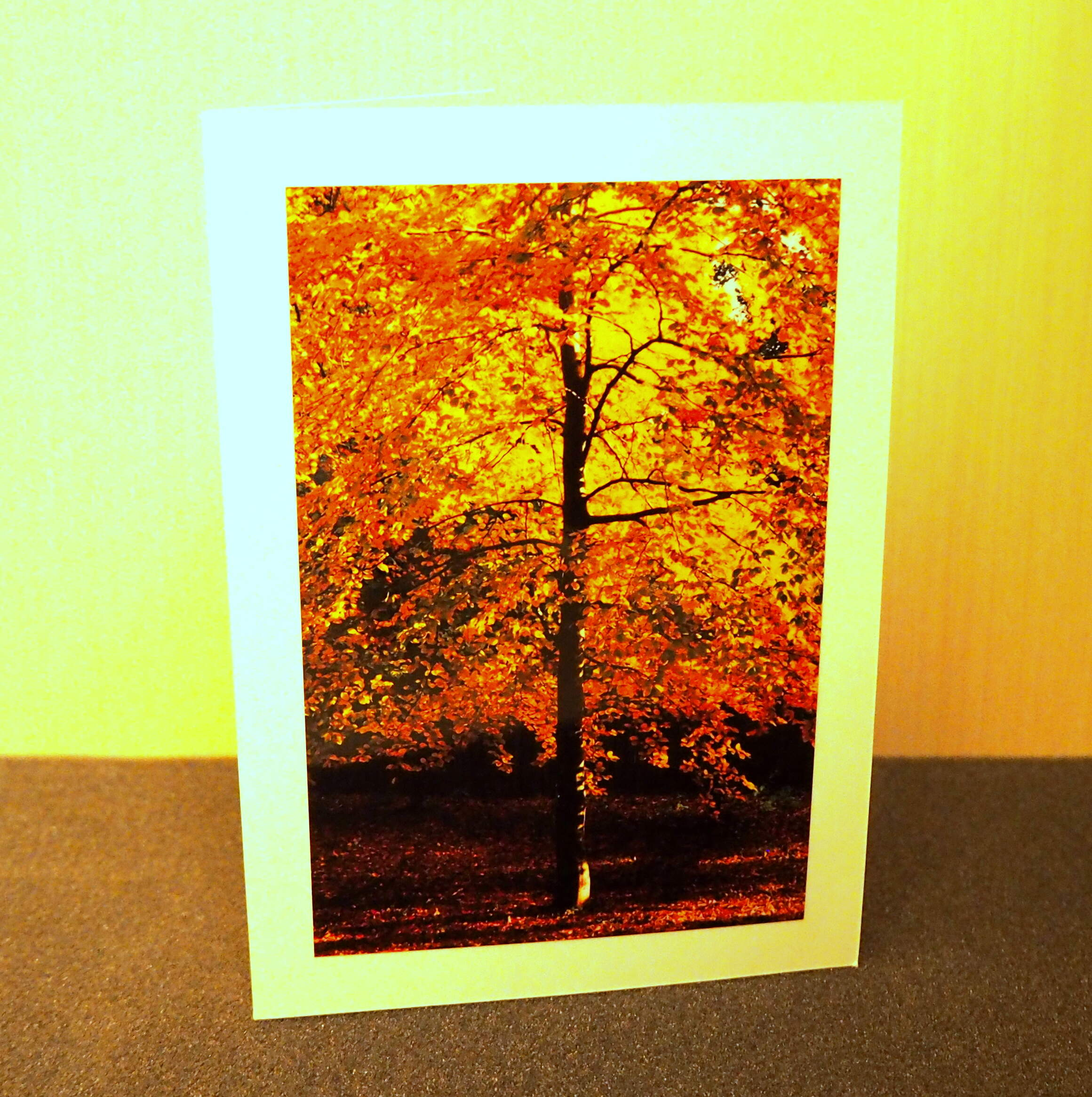 Amber of Autumn Card Collection
