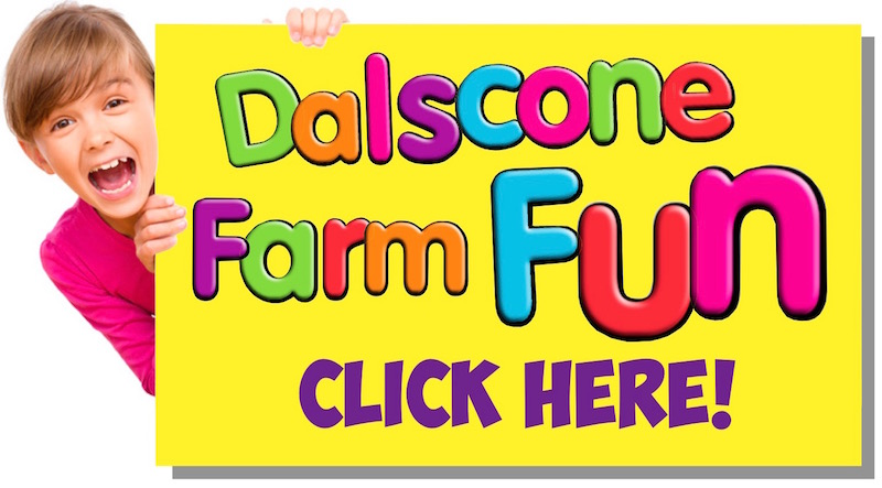 Dalscone Farm Fun Dumfries - petting farm, outdoor and indoor play areas.