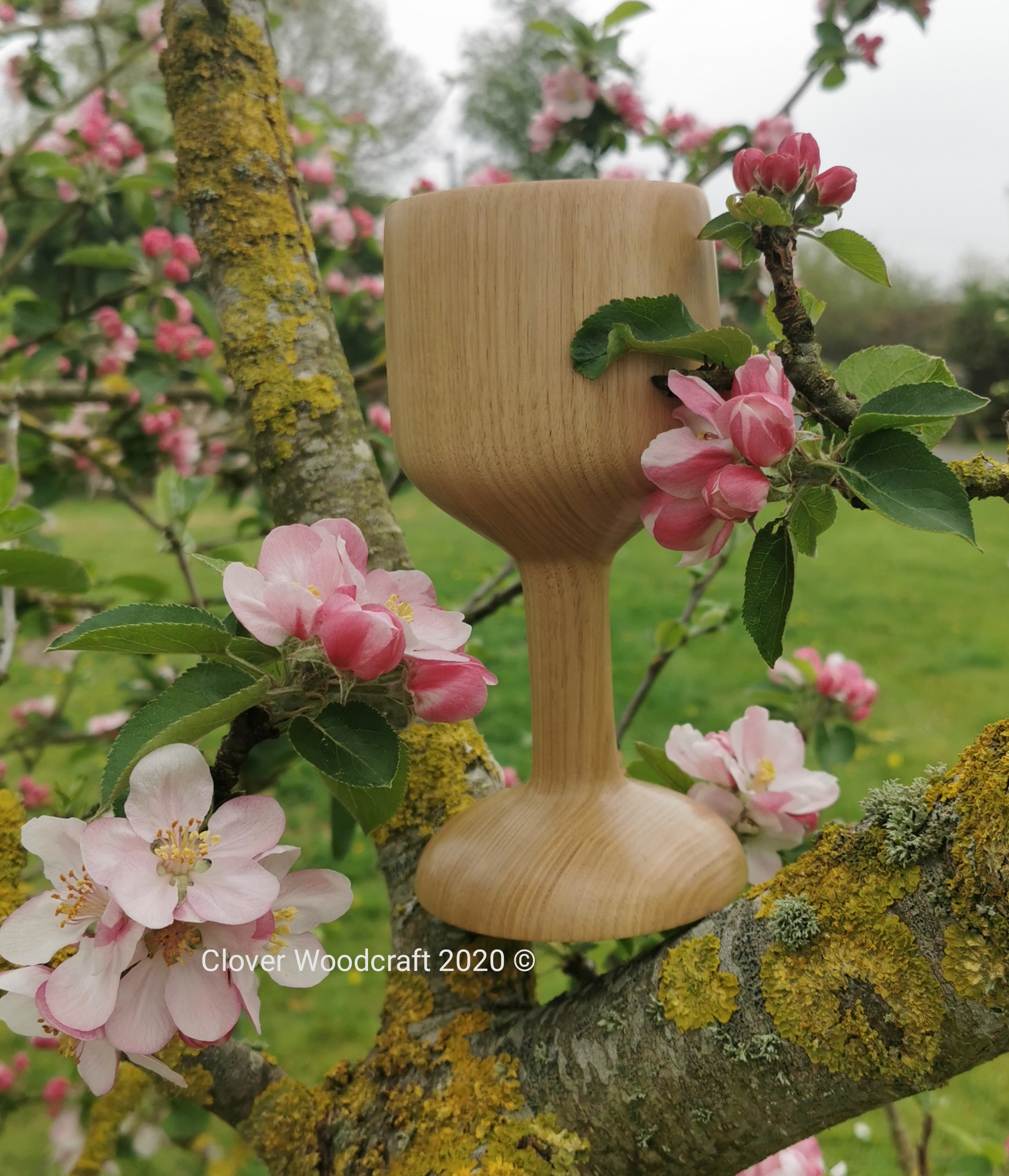 Spanish Chestnut Goblet