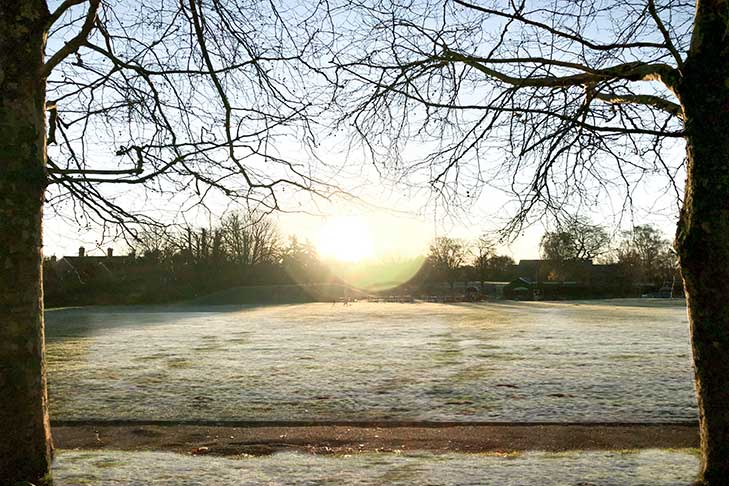 frosty morning sunrise over the park