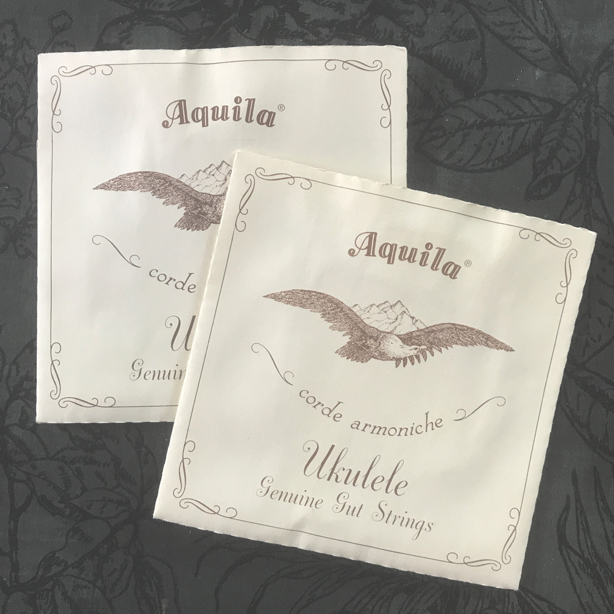 Aquila Genuine Gut Strings - sopraan