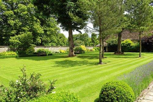 Formal garden with trees and plant border