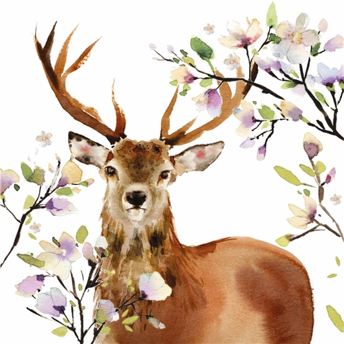 Kaart Beautiful deer