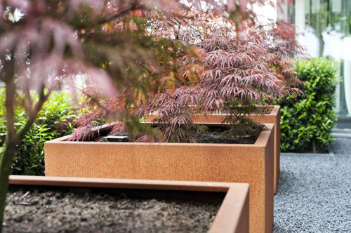 Adezz corten steel planters with Acers