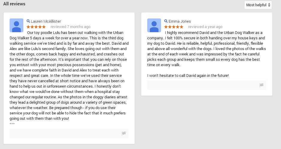 Google review Bildeston dog walker
