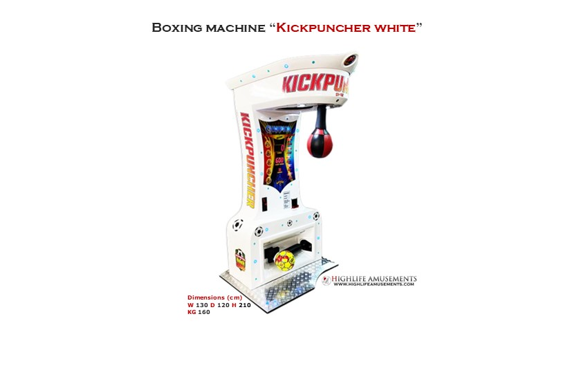 "Rental boxing machine ""Kickpuncher"""