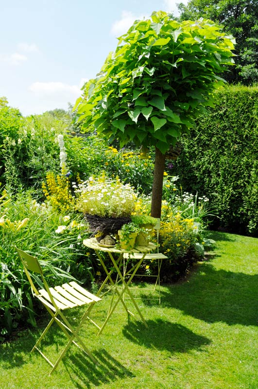 Intimate seating area with formal planting