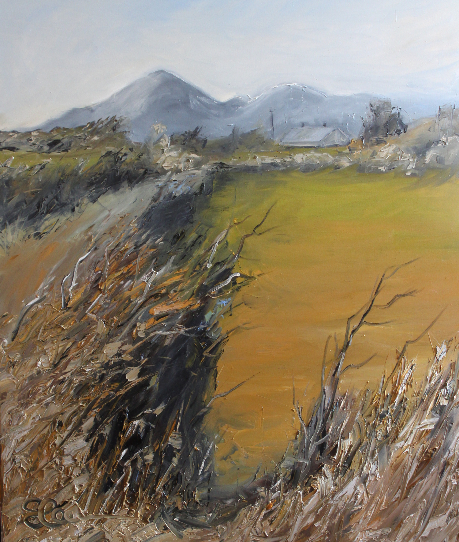 Mourne Mountains, County Down - oil on canvas